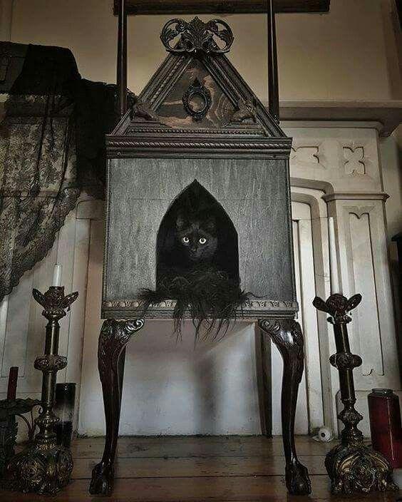 Домик для кошки в готическом стиле