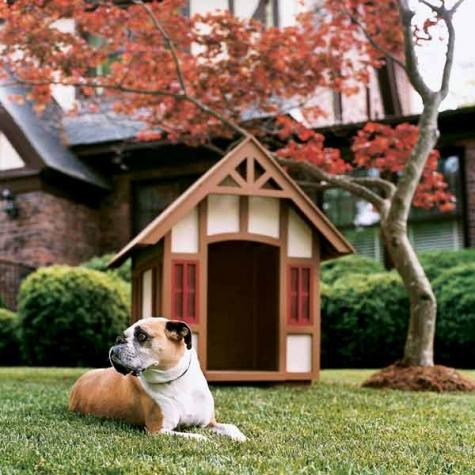 40 Завораживающих домиков для собак