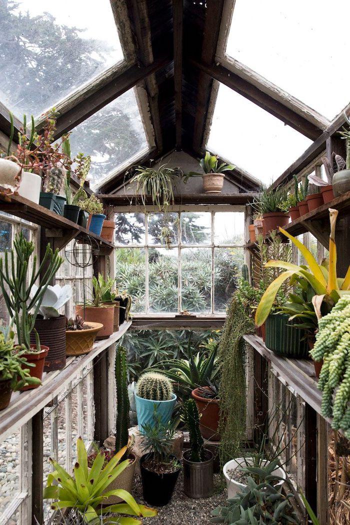 18 сарайчиков и теплиц, которые изменят восприятие садового участка