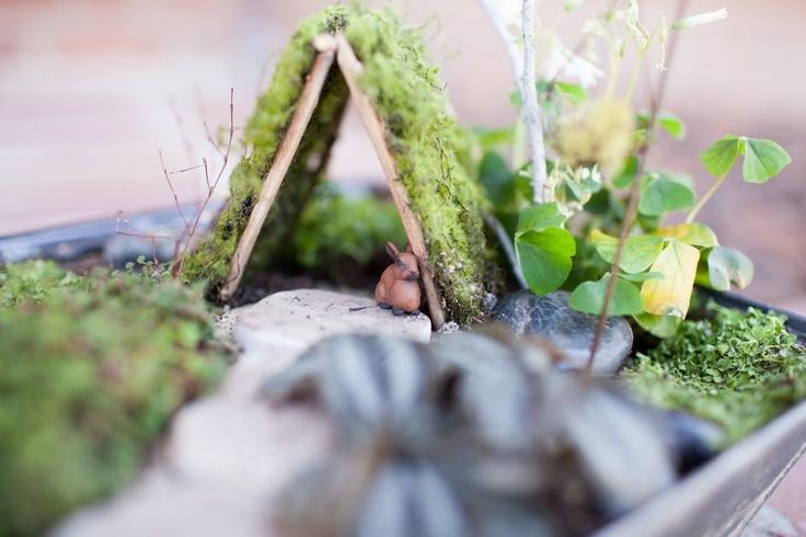 Практические идеи миниатюрных садов. ТОП 35