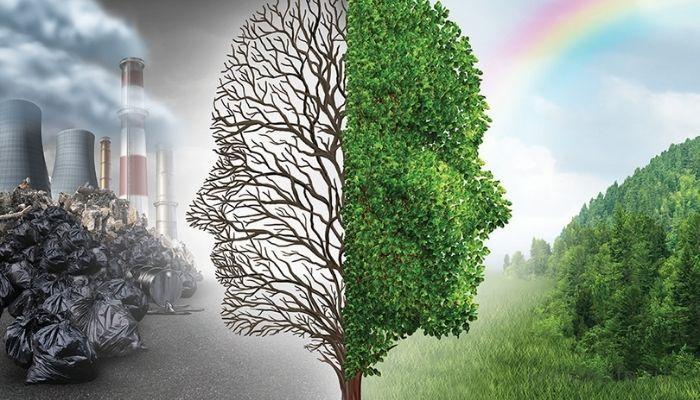 Экологично и разумно: осознанное потребление как тренд