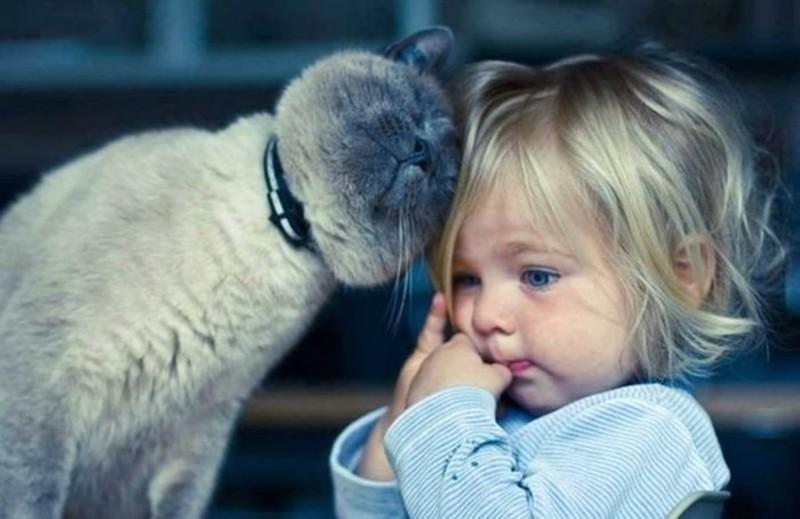 воспитание доброты у девочки